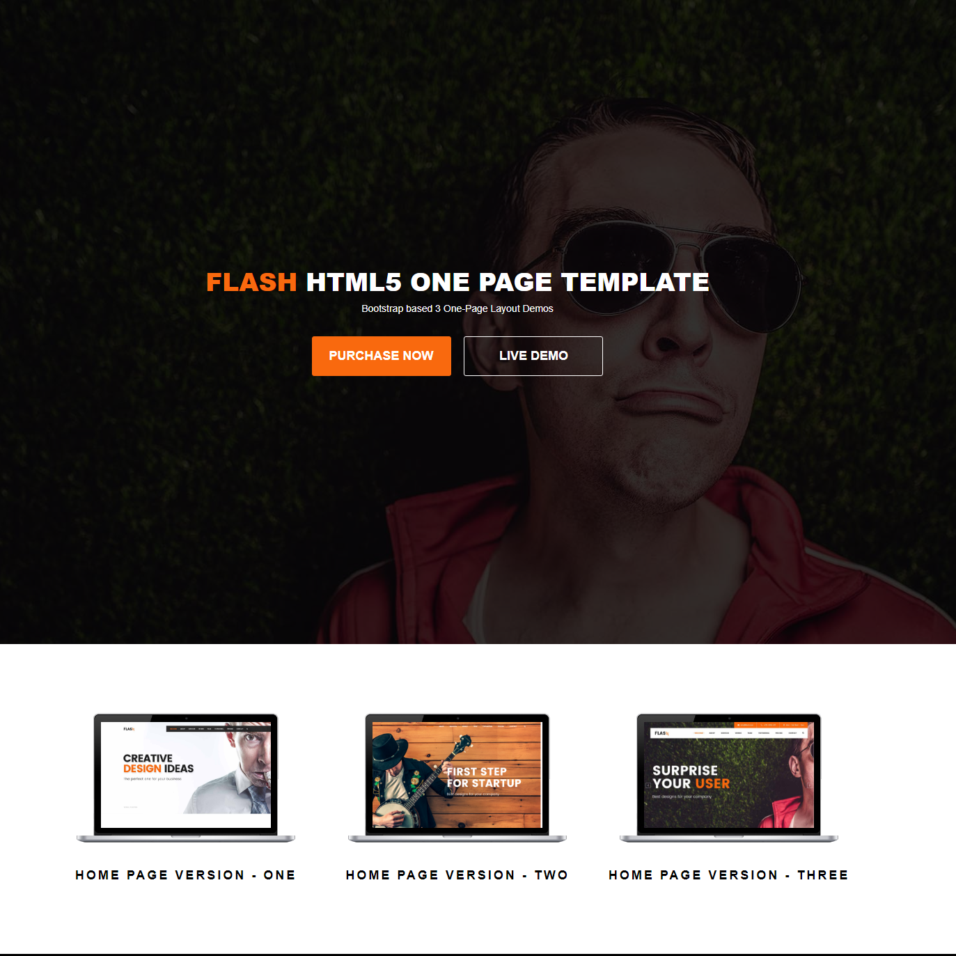 Responsive Bootstrap Flash Templates